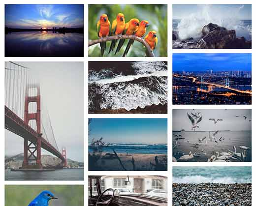 8 Best & Free WordPress Gallery Plugins